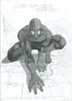 SpiderMan by rutherCordova