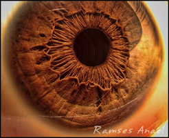 My Eye II by Ramses-Anael