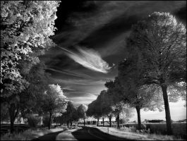 Skyfishcloud infrared... by MichiLauke