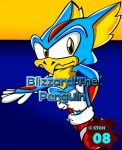 Blizzard - Sonic Rush.:ID:. by Steel-The-Cat-Hog