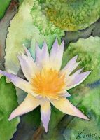 watercolour waterlilly by karincharlotte