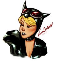 Adam Hughes Inspired Catwoman by RooseKrautshire