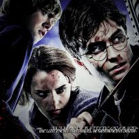 Harry potter DH by whenlovetakesover