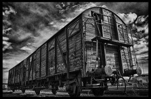 old abandoned train wagon by stmb3224