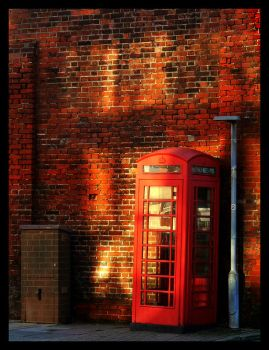 The Phone Booth by Phragmites