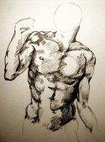 Leaning Torso by vanessad