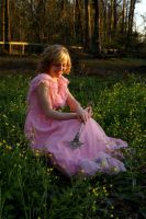 Glinda the Good Witch by Mad-Tea-Party-Prodn