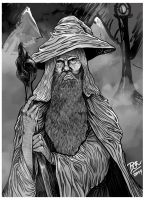 Gandalf, The Grey by balluxnicocelli