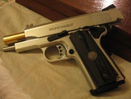 Wilson Combat Compat .45 by EmptyChambers