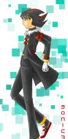 shadow human : riders ver. by sonic75619