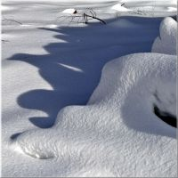 Shadows in the snow... by Yancis