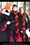 Ron, Harry and Hermione by KateFromMoon