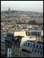 Paris from the Top by scear