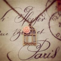 Rosy Birdcage Necklace by MegamiMoon