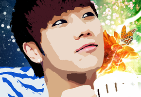 Sunggyu Vector Popart by KpopGurl