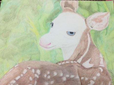 Piebald Fawn by Gothic-Night-Raven