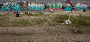 1-08-2012 full wall by Dhos218