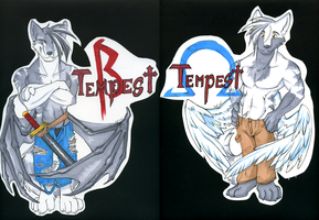 Tempest Double-Sided Badge by KazeWolf