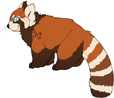 You're a Red Panda? by mute-owl