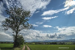 On my Way wtih blue Sky and Clouds by Aneede