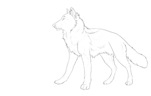 Line art for rp ref by DawnFrost