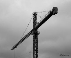 2014-10-18 Crane by Misterious-One