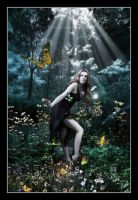 Butterflies by EmberRoseArt