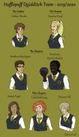Hufflepuff Quidditch Team by AlbinoNial