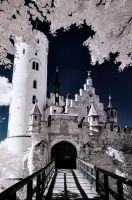 Lichtenstein Castle by vw1956