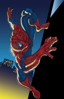 Spiderman by vrm1979COLORS