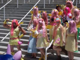 AX2014 - MLP Gathering: 33 by ARp-Photography