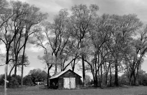 Shed II in B+W by WilsonPhotos