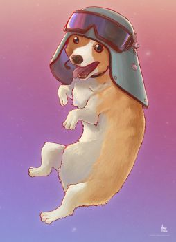 Commission - AT-AT Commander Corgi by andrerb