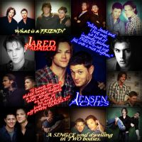 Jared and Jensen- Friendship by TheDocRoach