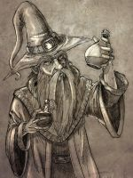 The old Wizard by prafaelb7