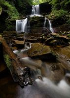 Ricketts Glen Park by Brettc
