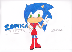 Gift for SonicaSpeed by sonic4ever760