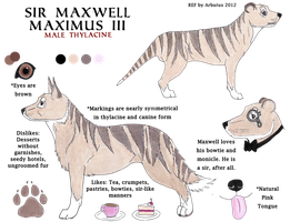 Maxwell the Thylacine (M) by arbutusbreedery