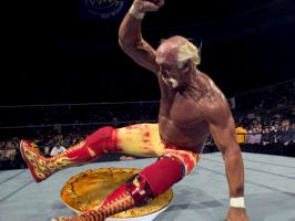Hulk Hogan vs The Killer Pie by mapacheanepicstory