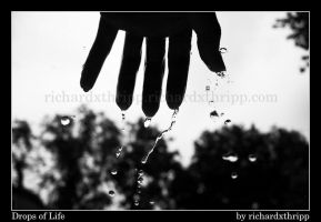 Drops of Life by richardxthripp