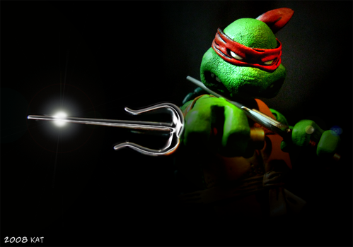 TMNT NECA Raph Photo by theblindalley