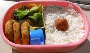 A Simple Bento by LadySiha
