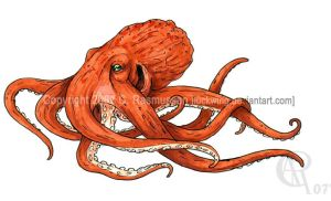 Pacific Octopus by Luckwing