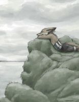 Cloudy Day Coast Fox by Zethelius