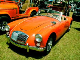 1959 MG MGA 1600 by Mister-Lou