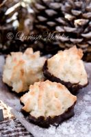 Coconut Macaroons by Lily-of-the-Vallley