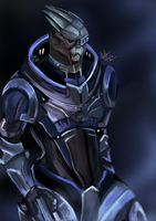 20_2_12 Garrus by Beverii