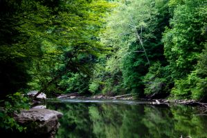 Mill and Stream In-Frame - Still Waters 2 by wetdryvac