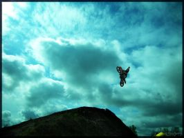 Motocross Freestyle two by Ghostsk8ter