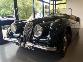 Jag XK120 roadster front by Car-lover33